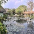 Hồ Rô đầu vuông Thủy Mộc Thông Báo ngày mai 7h sẽ xả dèo bên hồ chống lock do hồ