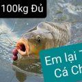 Thả tiếp 100kg cá CHÉP cho ngày chủ nhật (20/12/2020). (Tiếp nối đã thả 120kg cá