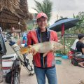 Hôm nay cá chép ăn rất nhiệt, Heo đã bị bắt, to nhất trong 4 heo gần đây, chúc m
