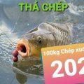 Kính gửi. Thả Cá Chép Tiếp nhé.