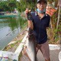 Chúc mừng cần thủ, chúc em vui vẻ, cá lên sớm ăn cám nha anh em.